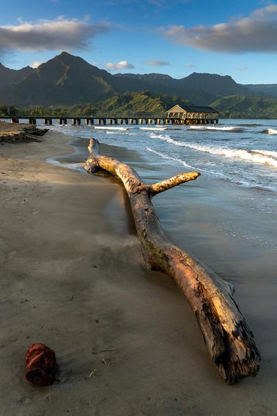 Kauai 2020-19.jpg