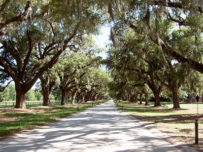 Boone Plantation