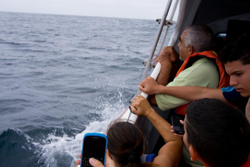 manta whale watching boat.jpg