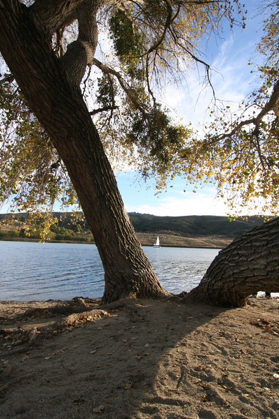 Lake Elizabeth 054-1.jpg