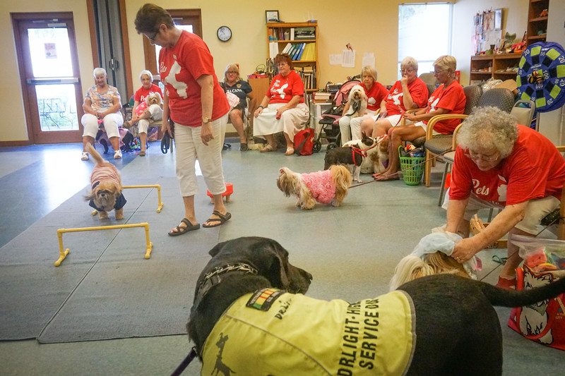 Pets Add Life, Therapy Dogs,   Assisted Living visits, 8 13 2018 , DSC06618