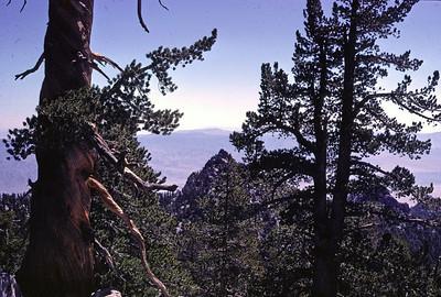 5/16/1987 - San Jacinto Peak Hike