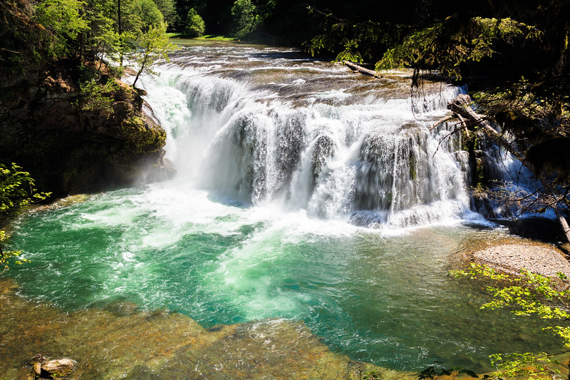 Gifford Pinchot National Forest