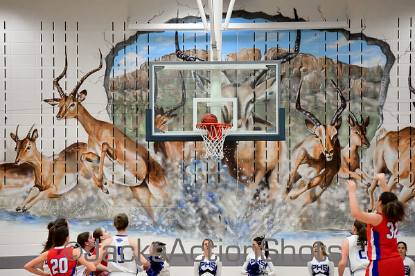 Girls playoff game: Cherry Creek at Poudre - March 1 2016