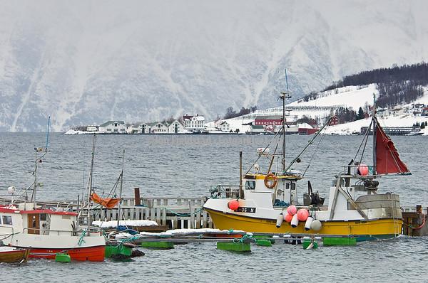 Fiskeri, Fiskefartøy, Kystfiske, Sportsfiske