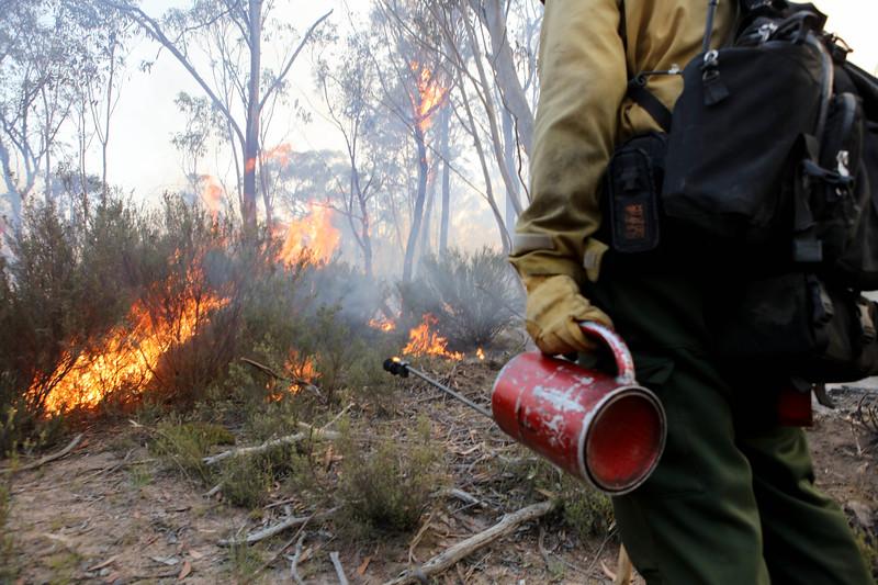 11. Australia Bushfires_16.JPG