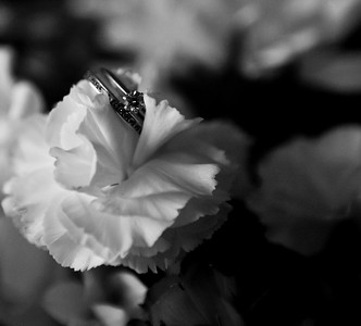 Proofing-Wedding