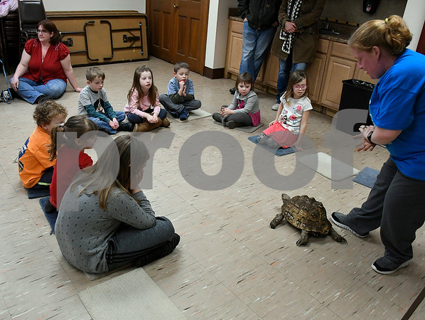 2/10/2018 Mike Orazzi | Staff Holly Gagnon shows off Tootsie, a leopard tortoise, at the New Britain Youth Museum at Hungerford Park during the Wild about Animals Valentines Day Party on Saturday in Kensington.