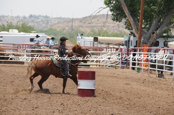 Sierra County 6-23-13 Nov Barrels