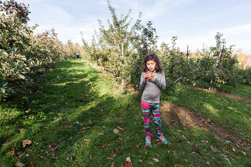 20171022_Apple Picking and other Fun_0078.jpg