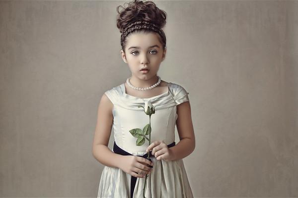 Fine Art White Rose - Dani Geddes
