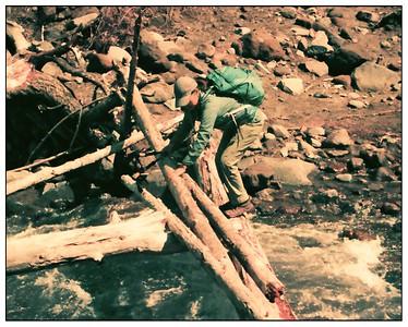 Hiking in Lomo Purple 2020/04