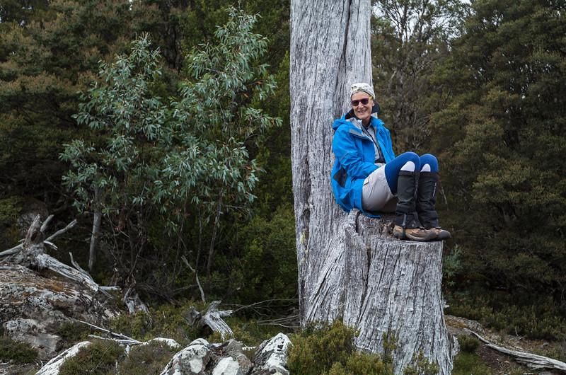 Tasmania_2015_135.jpg