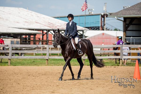 72 Hunter Seat Equitation Sr