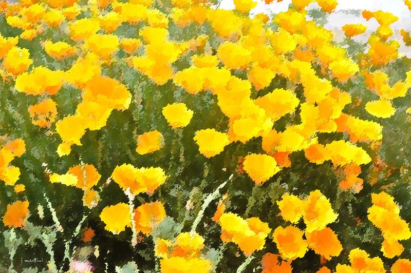 dream gardens 23 2-5-2011.jpg
