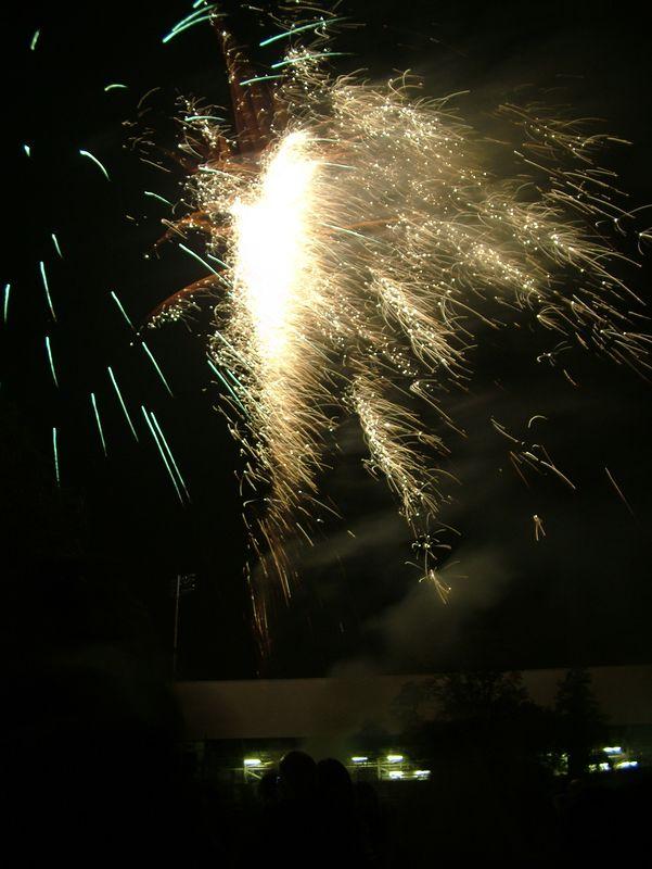 2004_1105putneyfireworks20071.JPG