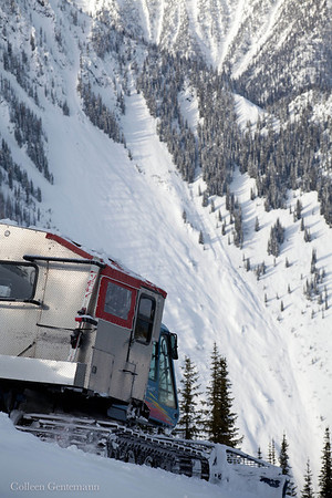 White Grizzly Snowcat Skiing Guest Images
