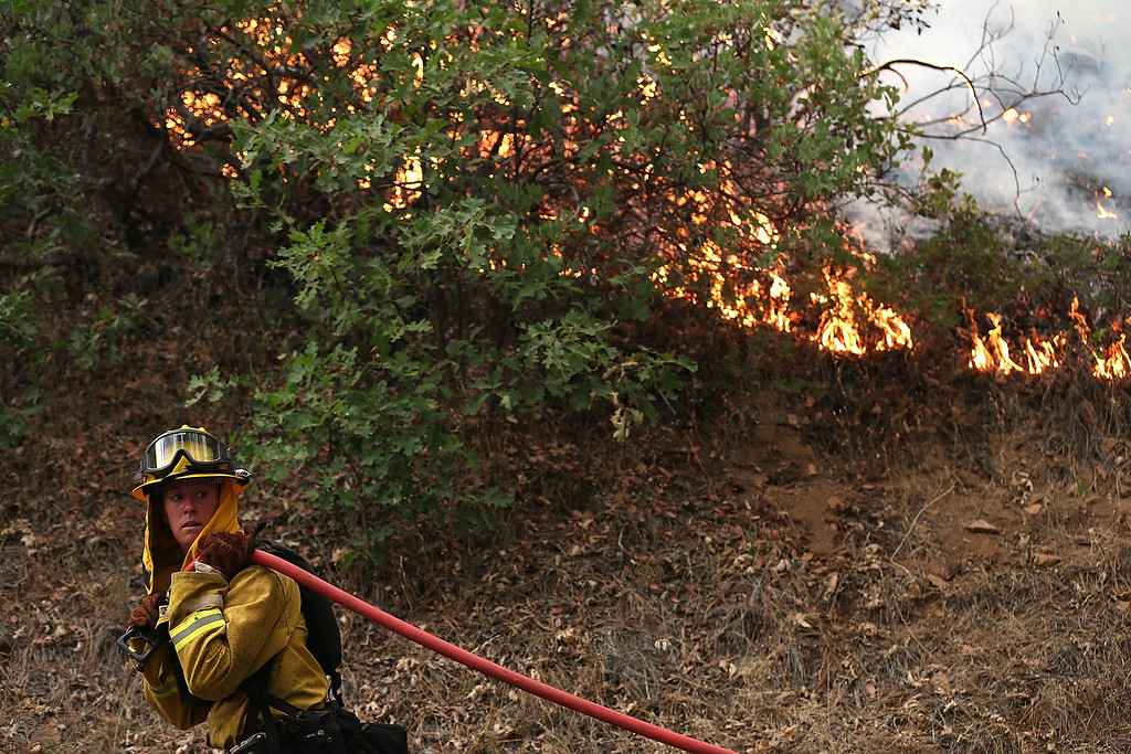 . GROVELAND, CA - AUGUST 21:  A firefighter from Ebbetts Pass Fire District pulls a hose as she monitors a back fire while battling the Rim Fire on August 21, 2013 in Groveland, California. The Rim Fire continues to burn out of control and threatens 2,500 homes outside of Yosemite National Park. Over 400 firefighters are battling the blaze that is only 5 percent contained.  (Photo by Justin Sullivan/Getty Images)