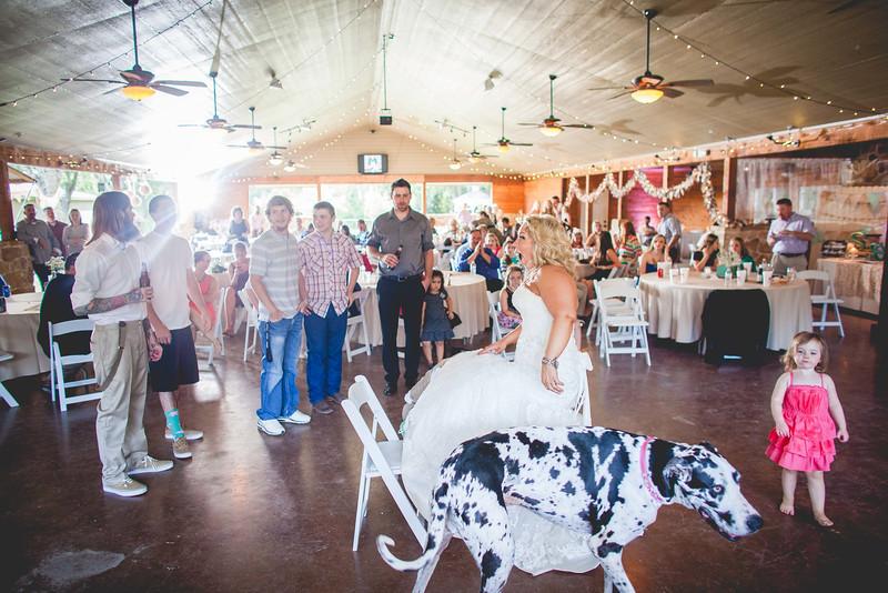 2014 09 14 Waddle Wedding - Reception-728.jpg
