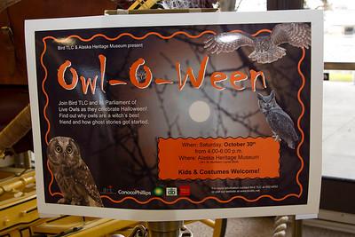 Owl-O-Ween 2010