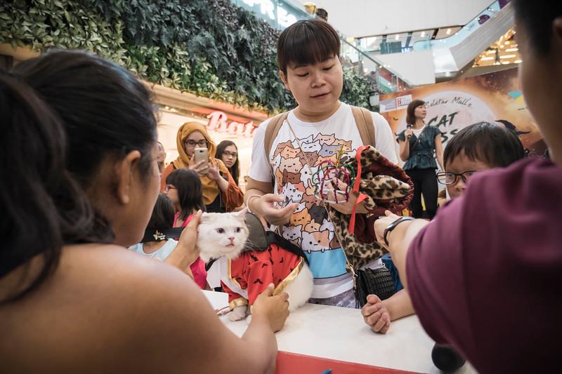 VividSnaps-The-Seletar-Mall-CAT-Dress-Up-Contest-201.jpg