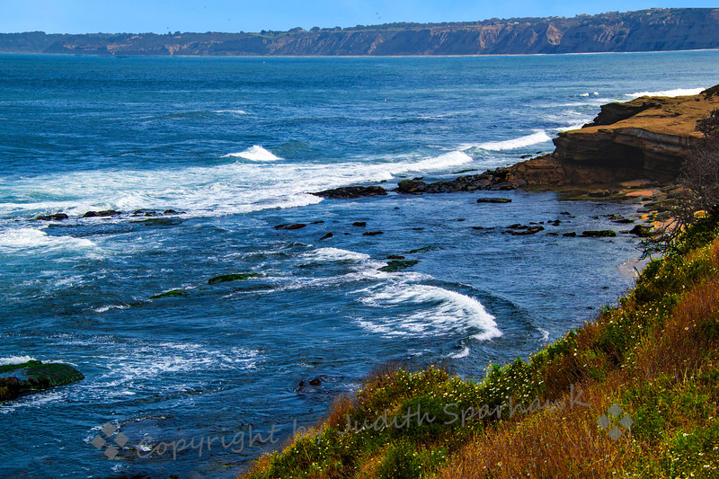 La Jolla Cove - Judith Sparhawk