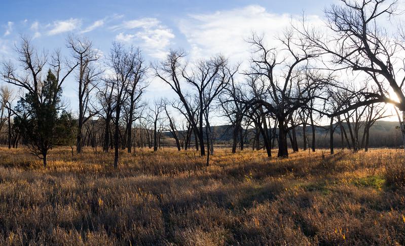 Juniper Camp Ground Theodore Roosevelt National Park North Unit