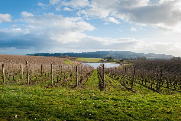 Wine Excursions 2013