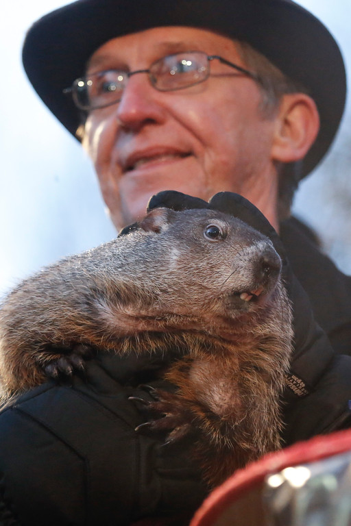 . Groundhog Club handler Ron Ploucha holds Punxsutawney Phil, the weather predicting groundhog, during the annual celebration of Groundhog Day on Gobbler\'s Knob in Punxsutawney, Pa., Tuesday, Feb. 2, 2016.  Phil\'s handlers said that the groundhog has forecast (AP Photo/Keith Srakocic)