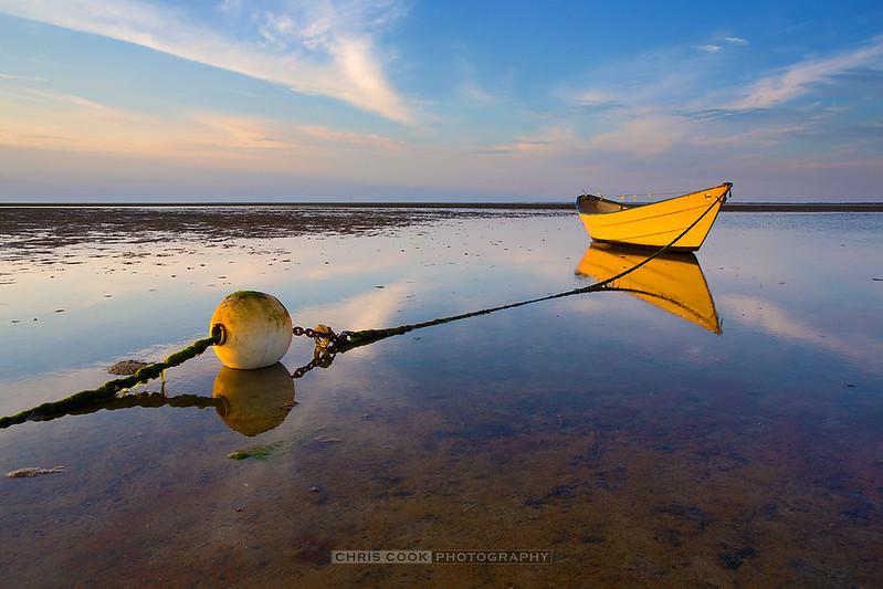 yellow-dory-071017.jpg