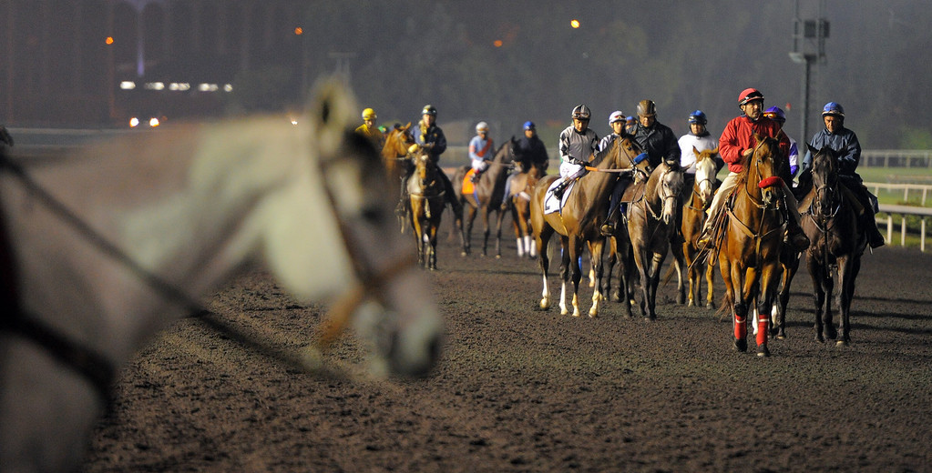 . Final day of horse racing at Hollywood Park in Inglewood, CA on Sunday, December 22, 2013. After 75 years, the famed racetrack is closing to make way for development.  Horses and their tenders take the track for the start of the 10 race. (Photo by Scott Varley, Daily Breeze)