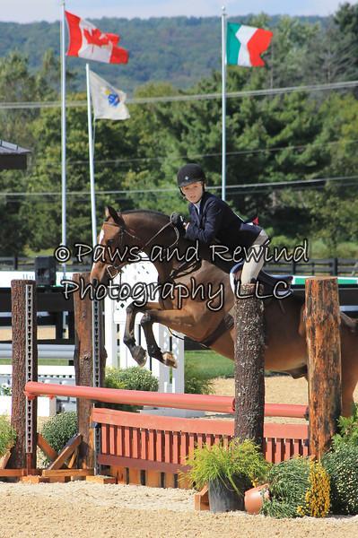 Saturday: Children's Pony Classes