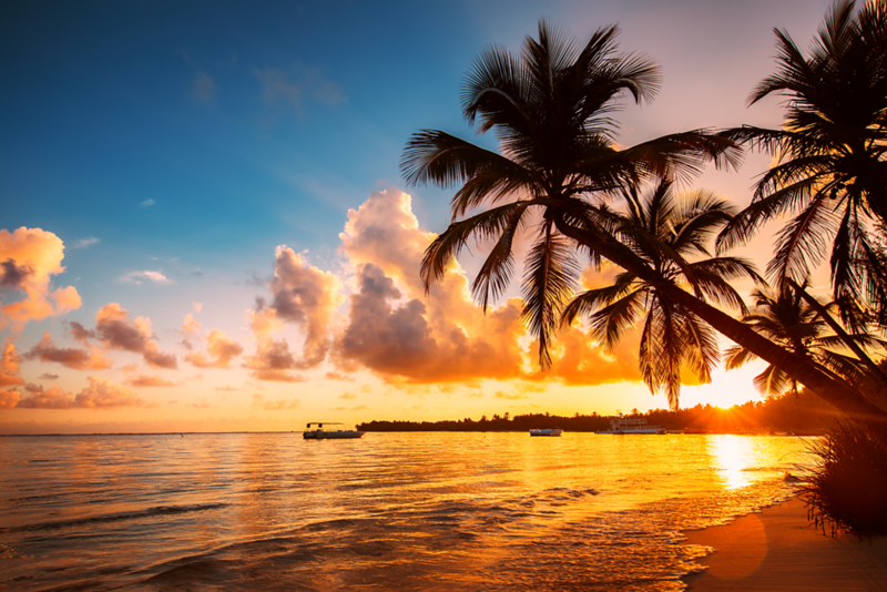 Tropical View AdobeStock_166255330.png