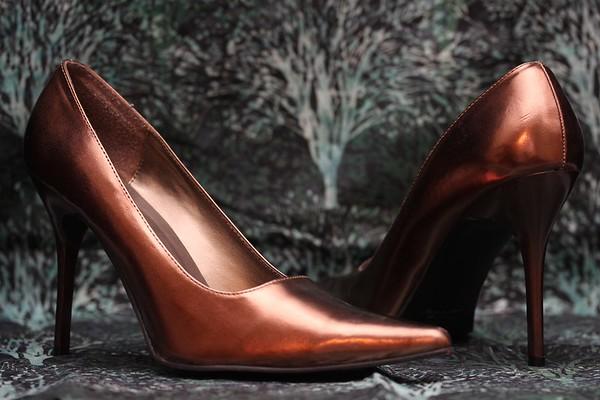 Hollywood Heels Bronze Pumps