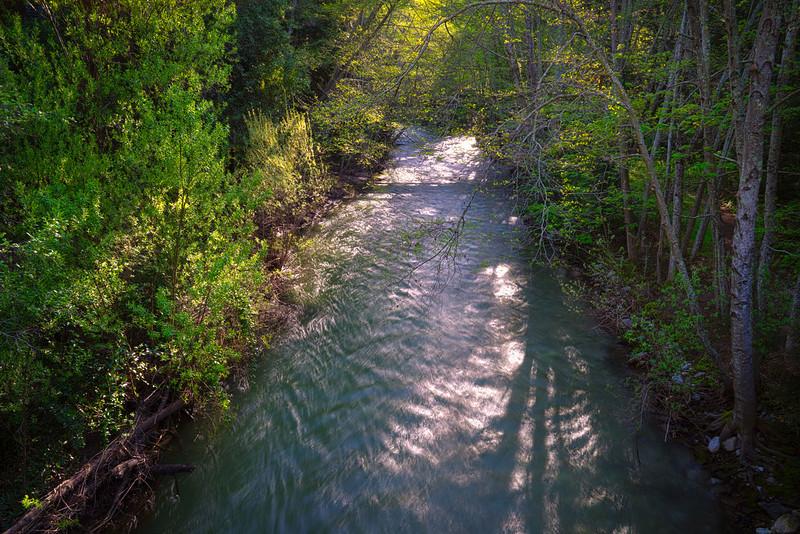 Big_Sur_River_Green_Scenic_Beauty_California_Coastal_Forest_DSC6104-Edit c.jpg