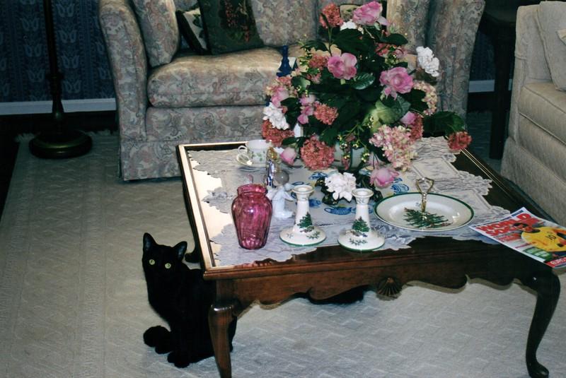 2000_December_Florida_Trip_and_Christmas_0009_a.jpg