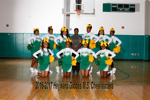 2016-2017 Cheer