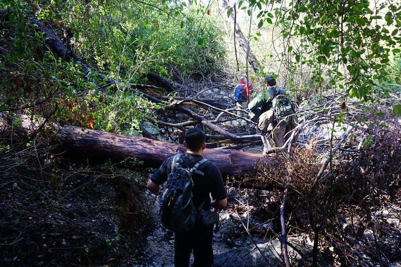 20160218070-Gabrielino Trail Scouting.JPG