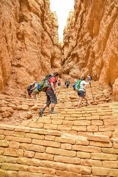 2019 Grand Canyon-145.jpg