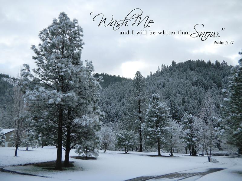 19_Psalm51-7_NJ_2010-12-28.jpg