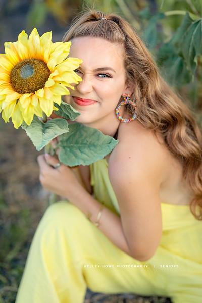 Sunflower 1204.jpg