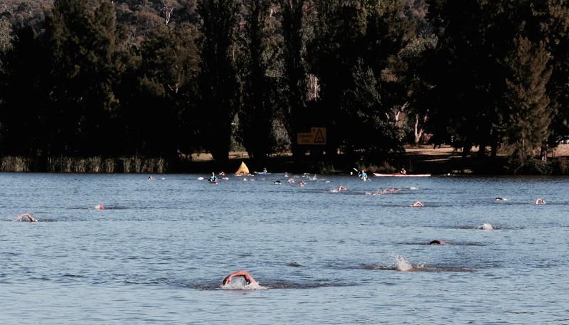 SC 2017-02-19 Canberra Swim 0.5, 2.5, 5km  - 11.jpg