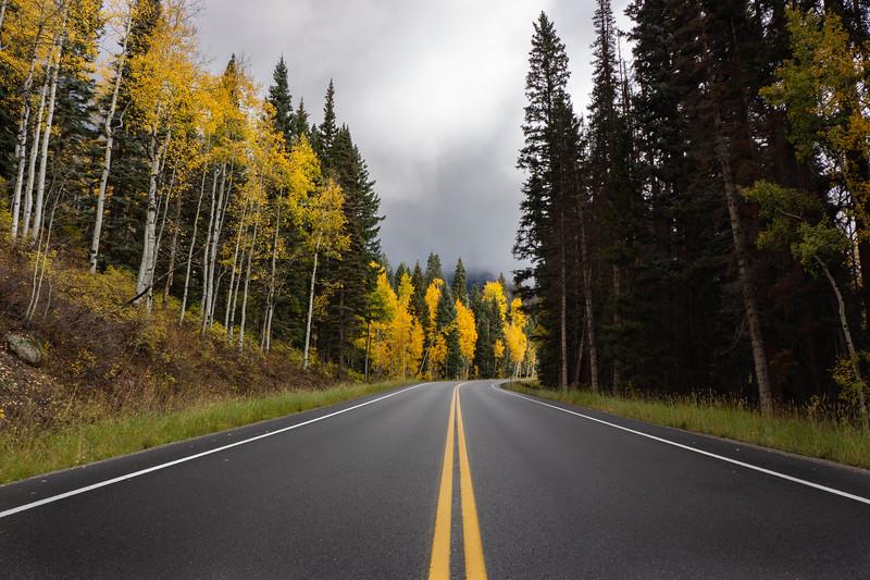 Fall_Road_Hank_Blum_Photography.jpg