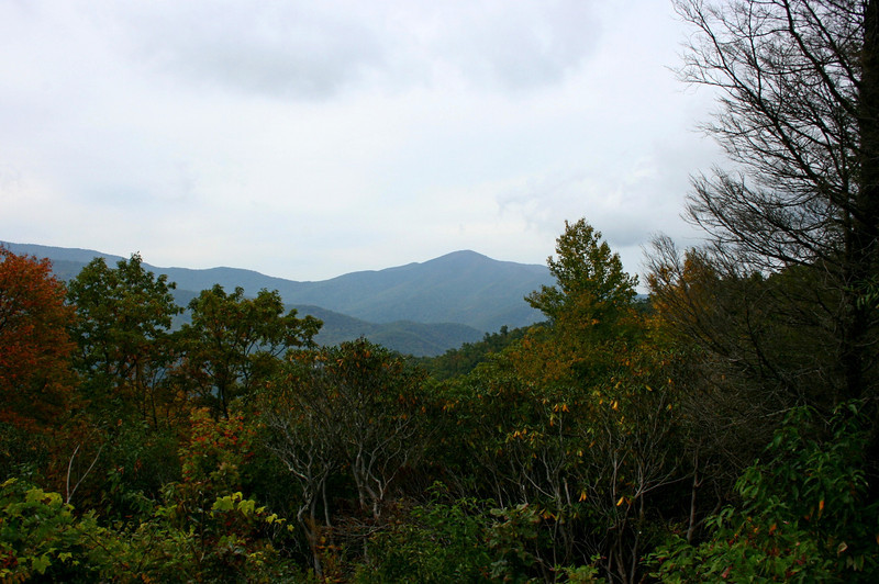 Pisgah Forest 9-30-12 98.jpg