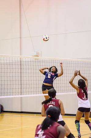 HCSC Volleyball Tournament