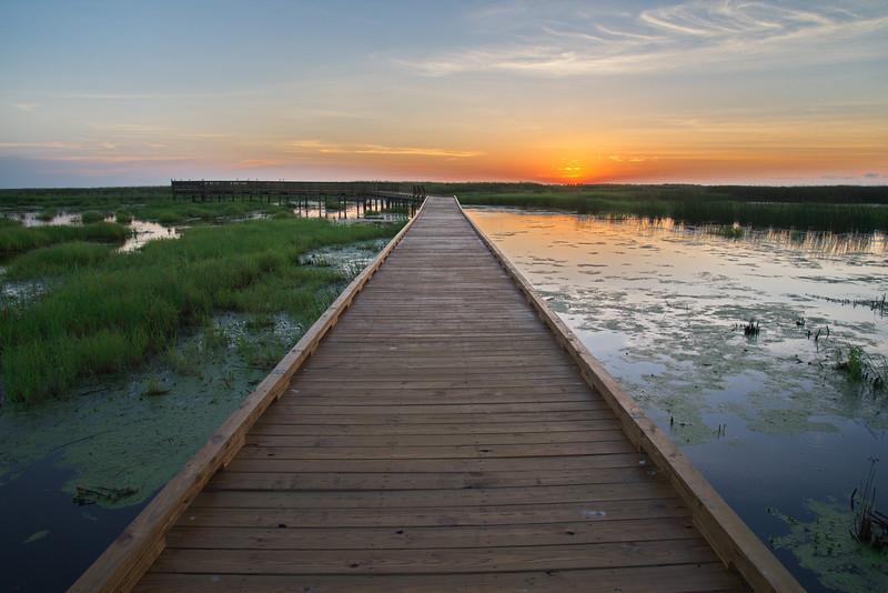 20190619_AnahuacNWR_Shovelers_Pond_Sunrise_Boardwalk__750_1828.jpg