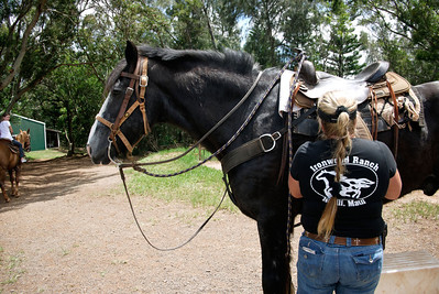 Maui 2011 - Horseback Riding
