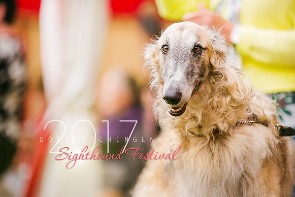 Donaueschingen Sighthound Festival 12/08/17