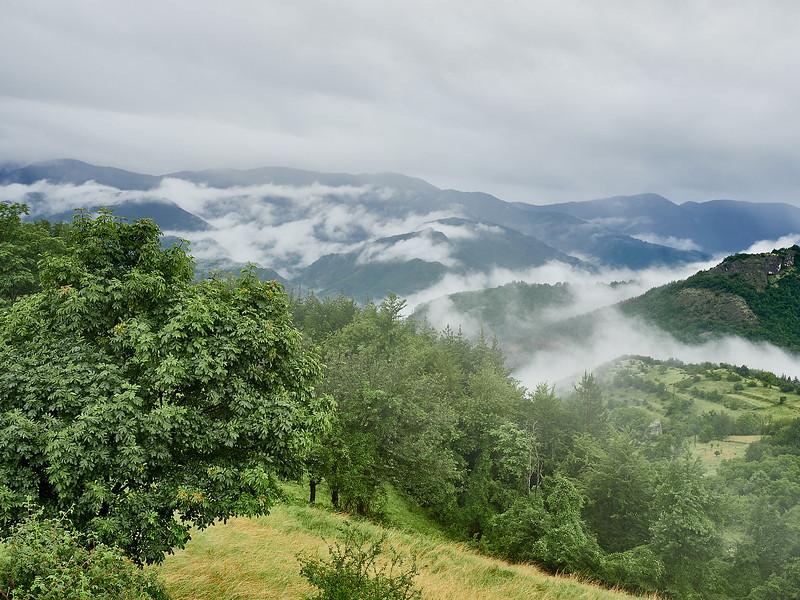 Lush mountain slopes