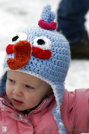 2013 Winter Carnival